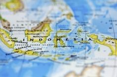 Hunting for living fossils in Indonesian waters | Soggy Science | Scoop.it