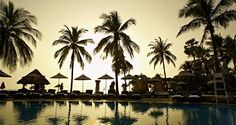 Hilton Hua Hin Resort & Spa hotel - Outdoor Pool with Palm Trees