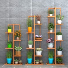 Bamboo Plants, Indoor Plants, Indoor Outdoor, Wooden Plant Stands, Diy Plant Stand, House Plants Decor, Plant Decor, Plant Shelves, Wood Shelves
