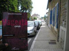 Ma nouvelle analyse sur le blog littéraire : La trilogie Magenta de Sokhna Diarra Bousso Ndao. Une plongée dans la jeunesse dorée dakaroise