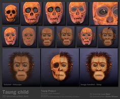 http://arc-team-open-research.blogspot.it/2012/11/taung-project-facial-forensic.html?spref=tw