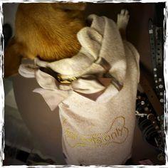 Non ha resistito a questa tutina For Pets Only #treviso #minupetshop