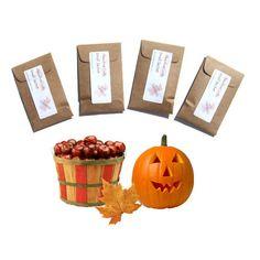 4 Pumpkin Pickin Autumn scented sachets handmade fresh by pebblecreekcandles, $12.00 #pumpkin #autumn #sachets