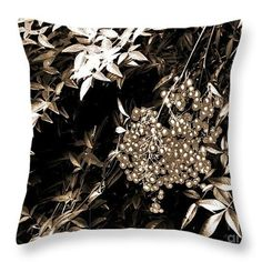 Berries in Sepia Throw Pillow  http://fineartamerica.com/products/berries-in-sepia-sarah-loft-throw..  #throwpillows #sarahloft #stilllife #berries #nature #photography #monotone