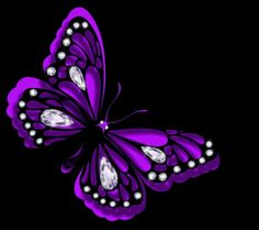 Purple Butterfly with diamonds