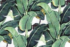 Resultado de imagen para tropical pattern