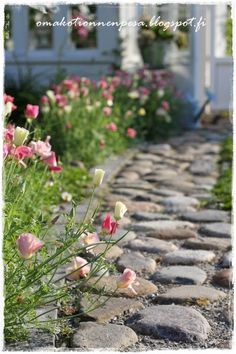 for down side of new home perhaps. Farmhouse Landscaping, Farmhouse Garden, Garden Cottage, Garden Landscaping, Love Garden, Dream Garden, Garden Path, English Country Gardens, Natural Garden