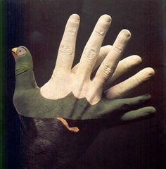 Peintures sur mains de Mario Mariotti
