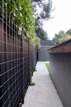 Oakdale Street - Ascher Smith Garden Privacy Screen, Garden Fencing, Trellis Fence, Outdoor Plants, Outdoor Gardens, Side Walkway, Garden Landscape Design, Garden Structures, Garden Planning