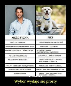 Man vs Dog - choice is simple: O choose dog cuz it is loyal and thinks that I am beautiful *w* Wtf Funny, Funny Memes, Jokes, Animals And Pets, Funny Animals, Happy Quotes, I Love Dogs, Funny Photos, Laugh Out Loud