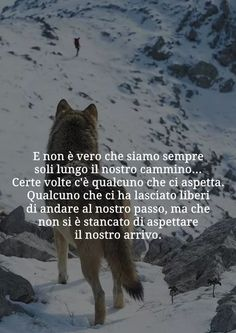 Important Quotes, Italian Quotes, Outdoor Men, Deep Meaning, Italian Language, Learning Italian, Tumblr, Urdu Poetry, Life Is Beautiful