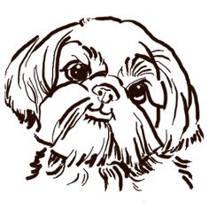 The Sweet Shih Tzu Dog Love Of My Life! Carry All Pouch / Travel & Pencil Pouch by Crazy Lalanny - Medium x Perro Shih Tzu, Shih Tzu Dog, Animal Stencil, Dog Tattoos, Dog Leash, Dog Care, Cute Stickers, Pillow Shams, Love Of My Life