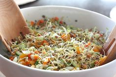 Mandarin orange and lentil sprout salad http://foodconfidence.com/2013/04/10/my-what-to-do-with-those-sprouts-salad/  #eatcleanpinparty
