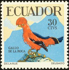 Andean Cock-of-the-rock stamps - mainly images - gallery format