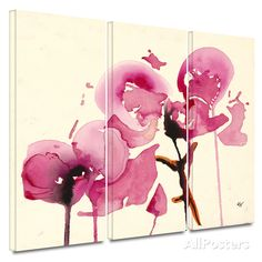 Orchids I 3 piece gallery-wrapped canvas Canvas Art Set at AllPosters.com