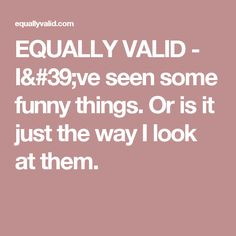 EQUALLY VALID - I've seen some funny things.Or is it just the way I look at them.