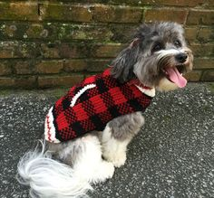 This snuggly warm red plaid small dog sweater will have your little pooch looking even more precious. Hand knit from wool.