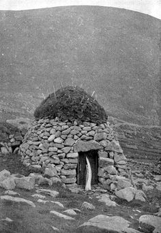 Taken from Richard Kearton's book, this photo shows a storage hut surmounted by a small mound of earth bristling with white spikes. The wooden door is propped up by the jawbone of a whale. It looks as if the spikes were meant to deter seabirds from alighting on, and nesting in, the turf roof. St Kilda