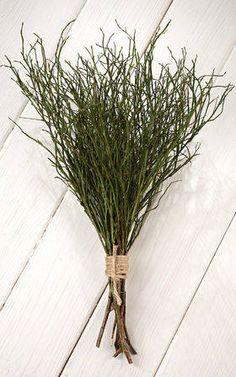 Jagodzina  naturalna wiązka 8-10 gałązek dł.ok 30 cm