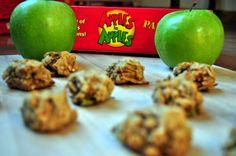 paleo apple cinnamon breakfast cookies- no sweeteners besides fruit, and nut free!