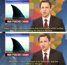 27 Of Our Favorite SNL Weekend Update Moments Related posts:A Big Bunch Of Funny Memes. Laugh & Enjoy — Of The Funniest Job Interview Memes EverHave Some Laughs With These Fresh Animal Memes Funny Shit, Stupid Funny Memes, Funny Relatable Memes, 9gag Funny, Funny Posts, The Funny, Funny Stuff, Funniest Memes, Funny Things