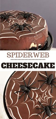 This cheesecake is the perfect combination of sweet and tangy, and still maintains its creamy consistency. it is the perfect base recipe that will allow all of your cheesecake dreams to come true. Once you have a good base like this, it is so easy to add new flavors or different toppings – or you can even turn it into a Spiderweb to celebrate Halloween like we did here. The possibilities are endless. Tart Recipes, Cheesecake Recipes, Sweet Recipes, Baking Recipes, Cookie Recipes, Dessert Recipes, White Chocolate Recipes, Chocolate Topping, Chocolate Cheesecake