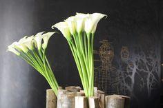 Hôtel Les Haras - Architecture, décoration & design, détails de la réception/composition florale