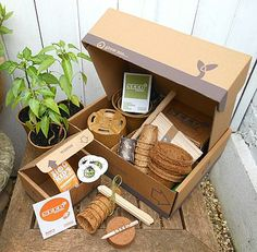 Dad And Me Vegetable Seed Boxes from NotOnTheHighStreet.com -- Lovely present from the kids to Dad on Father's Day.