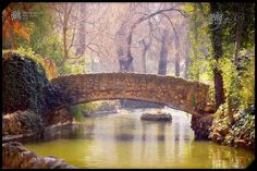 Parque Maria Luisa in Sevilla, Spain. A princess' garden, which was then donated to the city in 1893. Legend says Maria Luisa loved the park so much that she wanted to share it with the people. I hope the legend is true..