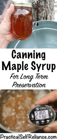 Canning Maple Syrup for Long Term Preservation is part of Canning Maple Syrup For Long Term Preservation - Maple syrup, if stored in glass jars and properly canned, should last indefinitely Plastic jugs Homemade Maple Syrup, Maple Syrup Recipes, Canning Syrup, Maple Syrup Taps, Water Bath Canning, Pressure Canning, Dehydrated Food, Canning Recipes, Canning Tips
