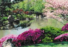 Spring in a Japanese Garden: Print available on Fine Art America