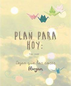 Plan para hoy!