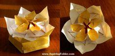 Double Flame OrigamiBox