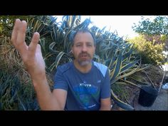 VLOG #135 Best Calorie Balance for Losing Weight and Marathon Training