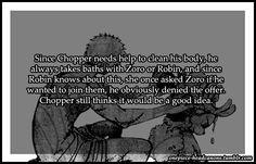 Oda I hope u let zoro be with Robin Zoro And Robin, Nico Robin, Anime One Piece, One Piece Comic, Monkey D Luffy, One Piece Theories, Akuma No Mi, Tsurezure Children, One Piece Pictures
