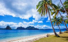 Philippines, beach, sea, palm trees, tropical island, sand