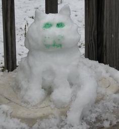 Snowcat from 12/12/2010 snow storm in Millbrook, AL