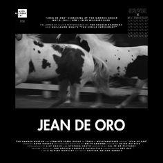 Jean De Oro screening at The Hammer Annex on Nov 8th, 2013. A film by Britt Browne for The Denim Project hosted by Chevignon in Medillin Columbia. Annex, Columbia, Indigo, Denim, Film, Artist, Gold, Movie, Indigo Dye