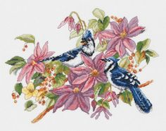 Janlynn Blue Jays & Clematis Counted Cross Stitch Kit 13 ...