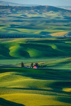 The Palouse hills in eastern Washington • photo: Piriya Pete Wongkongkathep on Flickr