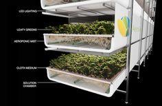 US: 69,000 sq. ft. indoor vertical farm to be built in Newark #hydroponics #UrbanAg