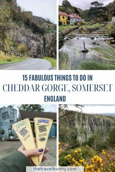 15 fabulous things to do in Cheddar, Somerset. Cheddar Gorge travel guide - things to do in Cheddar from Cheddar Gorge hike, caves, walks, rock climbing, tea rooms, cheese tasting and cider. #cheddar #somerset World Travel Guide, Travel Guides, Travel Tips, Solo Travel, Cheddar Gorge, Stuff To Do, Things To Do, European Travel, Travel Europe
