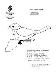Картинки по запросу chickadee перевод