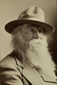 Portrait of Walt Whitman, 1878