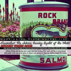 Need something to do for free in Anacortes, Washington? Check out the Salmon Trash Cans! (click through for more info)