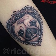 Lucky Pug Tattoos : Photo