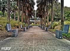 UCF Campus | University of Central Florida | Ahmad Alomari | Flickr