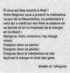 Le dégât des mots ( ... ) Al Utheymin