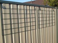 Image result for how to hide ugly colorbond fence - passion fruit vine