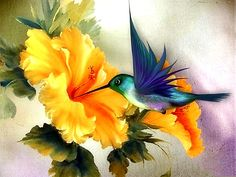 Peacock diamond painting kits that are filled with elegance. And owl painting kits that are filled with either mystery or humor. Art Paintings, Watercolor Paintings, Awesome Paintings, Paintings Of Birds, Watercolor Video, Colorful Paintings, Acrylic Paintings, Hummingbird Painting, Hummingbird Flowers